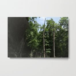 Still Standing in the Forest Metal Print