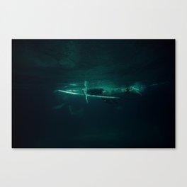 ONE BELOW SEA LEVEL Canvas Print