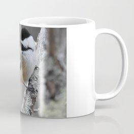 Chickadee on a Stick Coffee Mug