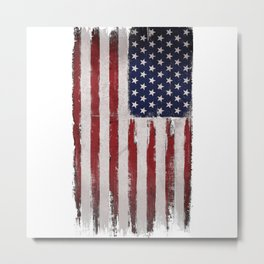This is america Metal Print