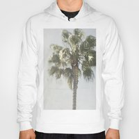 palm tree Hoodies featuring Palm Tree by Pure Nature Photos
