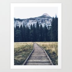 Yosemite Meadow Art Print