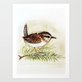 wren - watercolor  Art Print