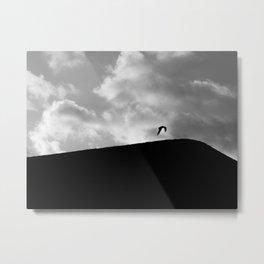 Soar. Metal Print