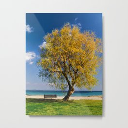 Spring tree bench and sea Metal Print