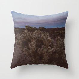 Cholla Cactus Garden VIII Throw Pillow