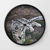 snow leopard Wall Clocks featuring Snow Leopard by Kaleena Kollmeier