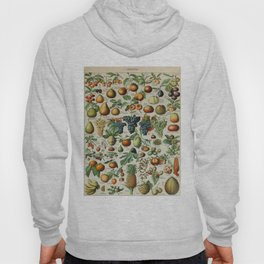 Fruits Vintage Scientific Illustration French Language Encyclopedia Lithographs Educational Hoody