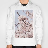 cherry blossoms Hoodies featuring Cherry blossoms by Flavia Morlachetti Photography