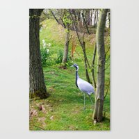 crane Canvas Prints featuring Crane. by Samuel Bridgeman