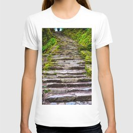 Stone Stairway in the Forest T-shirt