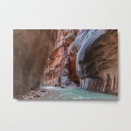 All Seeing Gopher (The Narrows, Zion National Park, Utah) Metal Print