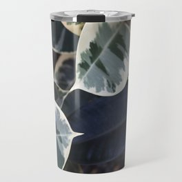 Ficus elastica Tineke  |  The Houseplant Collection Travel Mug