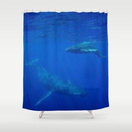 Underwater Humpbacks 5 Shower Curtain