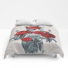 Minimal Redpassion Comforters