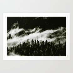 THE LAST FOREST - RISE ABOVE THE FOG ↟↟※↟↟ Redwood Park trees foggy tree nature black and white Art Print
