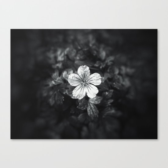 Minimalistic black and white flower petal Canvas Print