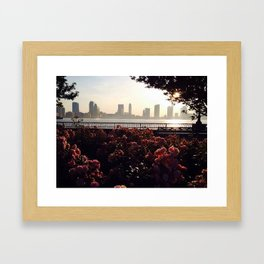 Hidden Beauty Framed Art Print