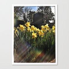 Graveyard Flowers Canvas Print