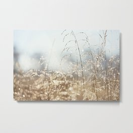 Gold Blue Sparkle Nature Photography, Dew Drop Grass Brown, Morning Water Dewdrops, Magical Bokeh Metal Print