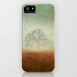 evolving mystery iPhone Case