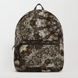 Chocolate Brown Backpack
