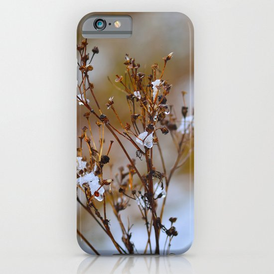 Frosty Days iPhone & iPod Case