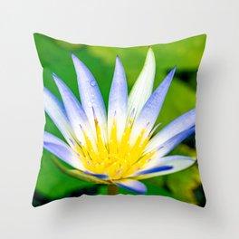 Flower macro Throw Pillow