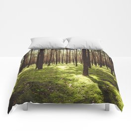 FOREST - Landscape and Nature Photography Comforters