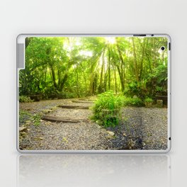 Nature Panorama Laptop & iPad Skin