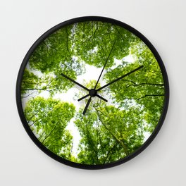 New green leaves Wall Clock