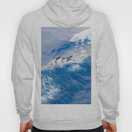 BLUE WAVES AND DOLPHINS Hoody