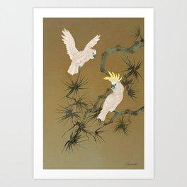 Wild Cockatoos Art Print