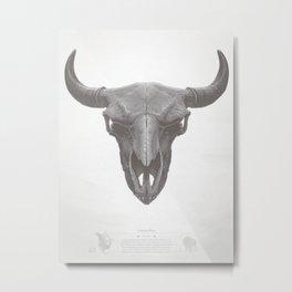 American Bison Skull Metal Print
