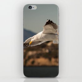 Alcatraz Freedom iPhone Skin