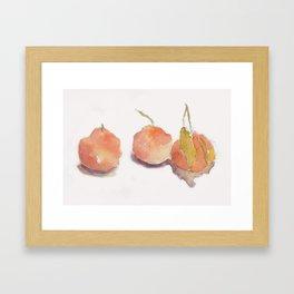 Three Asian Pears watercolor Framed Art Print