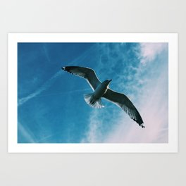 It's a Bird! It's a Plane! No, It's a Bird! Art Print