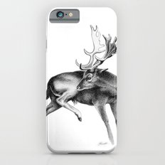 Fallow Deer Stag iPhone 6s Slim Case