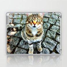 Alley Cat Laptop & iPad Skin