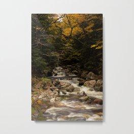 Scenic Metal Print