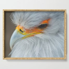 Feathers and eyelashes Serving Tray