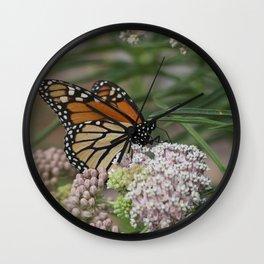 Majestic Monarch Wall Clock