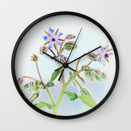 Tender Borage Wall Clock