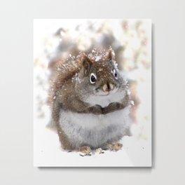 Sweet Squirrel Metal Print