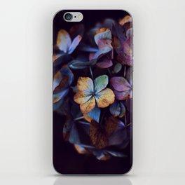 Hydragena Dream  iPhone Skin