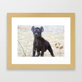 African Hyena Pup Framed Art Print