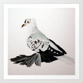 Pigeon Portrait - Fairy Swallow Art Print