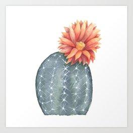 Gymnocalycium Baldianum - Cactus Flower Art Print