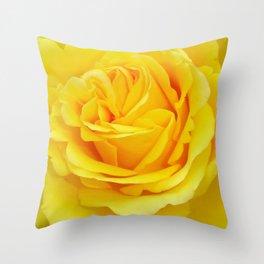 Beautiful Yellow Rose Closeup Throw Pillow
