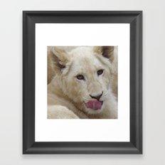 White Lion Cub - The Next Generation! Framed Art Print